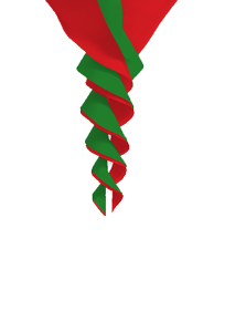 SoundWinds Bike Flag Rotini Small Spinner Red Green 391bksx