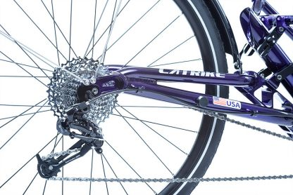 Close-up view of rear dropout of a Catrike Dumont Candy Purple fully suspended recument trike